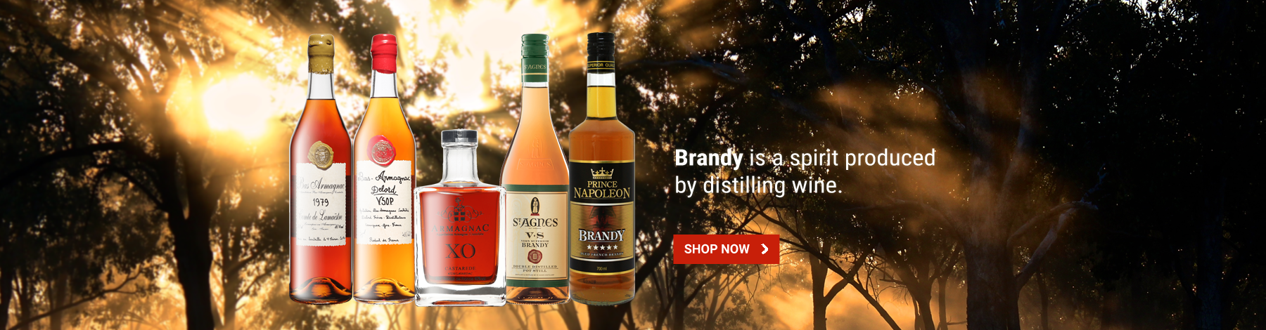 Brandy in Just Liquor Cellars